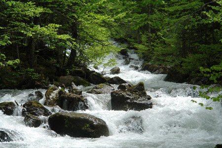 L'élément eau yang