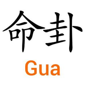 2015 : Prévisions par Gua