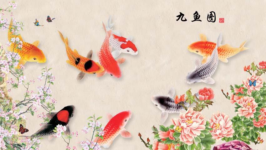 Les 9 poissons