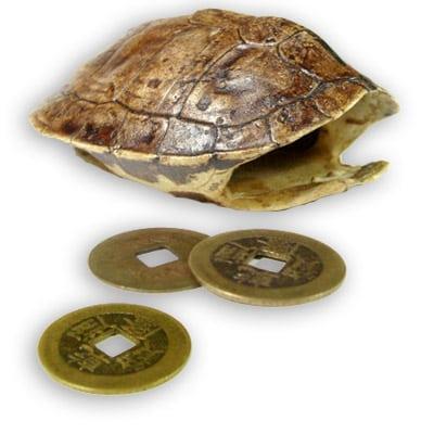 Yi king, carapace de tortue
